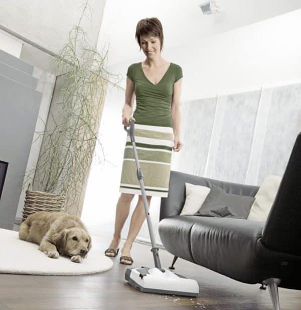 den haushalt trotz haustieren sauber halten haushaltshilfen24. Black Bedroom Furniture Sets. Home Design Ideas